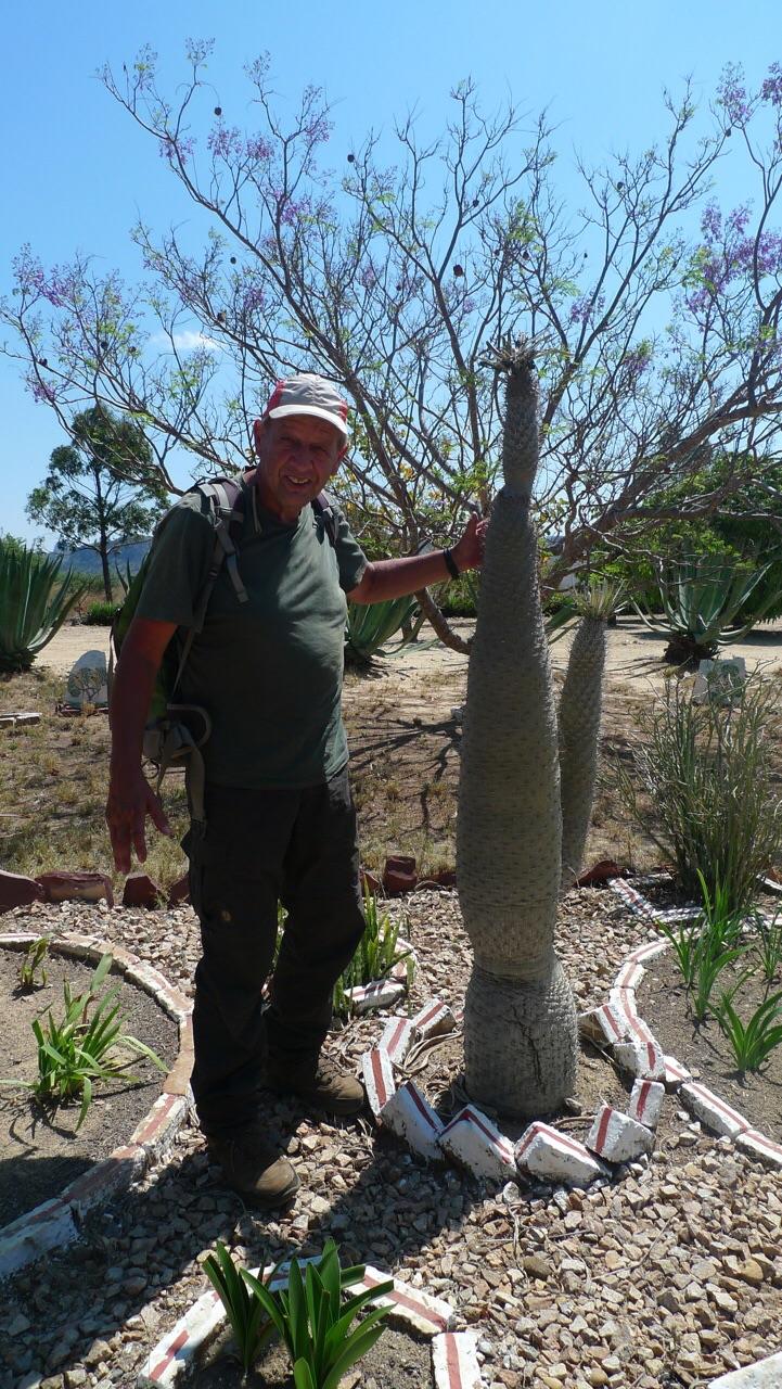 Fred naast een Pachypodium op de Arboretum d' Antsokay