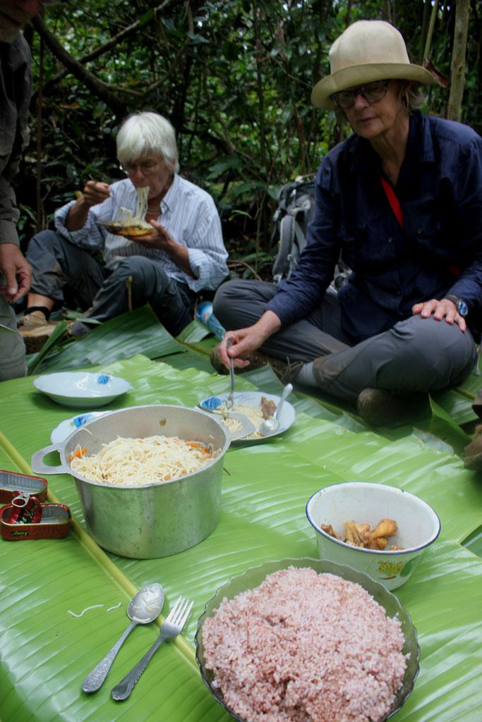 We picknicken op de groene bladeren van de reizigersplant